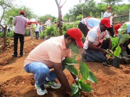 Plant tree today for better tomorrow