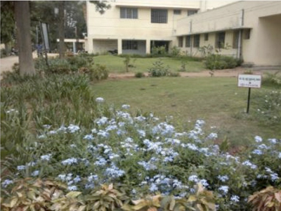 Bidadi health center lawn 